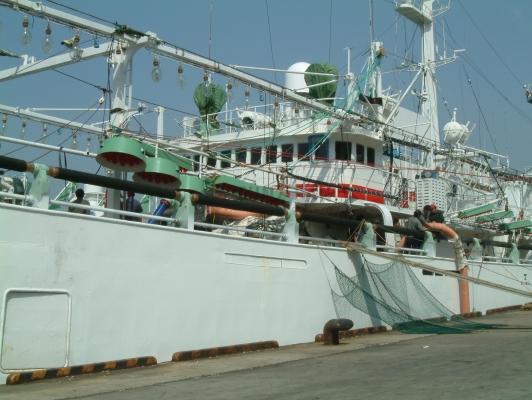 SanmaPacific Saury Fishing Gear System