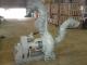 吸鱼泵-3